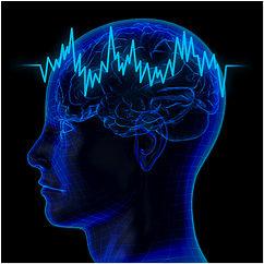 brain-image-