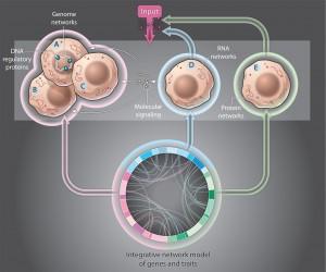 Science Magazine