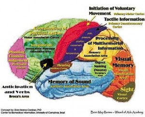 Brain regions for music