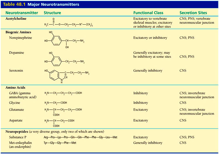 neurotransmitters_table