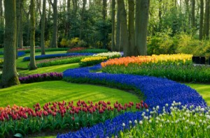Landscaping-with-flowers-82910