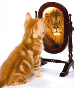 The sense of I   cat lion