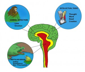 reptilian-brain1