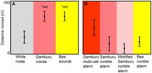 Graph of rumble elephant v human