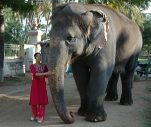 Sarah and Elephant