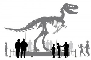 Editable vector silhouettes of people looking at a Tyrannosaurus