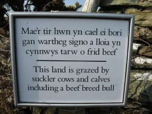 GeographBot    WIK   Bi-lingual_warning_sign_at_the_stile_leading_on_to_NT_land_-_geograph.org.uk_-_1215057