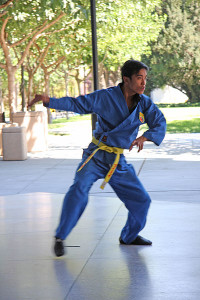 Flickr upload bot WIK martial arts