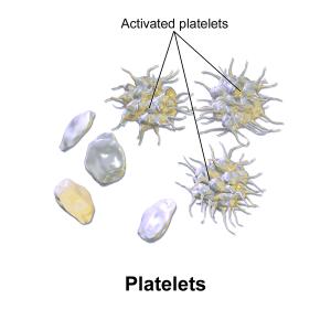 BruceBlaus  WIK diagram activated platelets  600px-Blausen_0740_Platelets