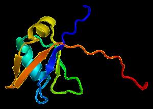PDBbot  TDP43 Protein_TARDBP_PDB_1wf0