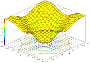 Pasimi   wik    F(x,y)=−((cosx)^2_+_(cosy)^2)^2