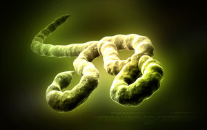 Digital illustration of Ebola virus in   colour background