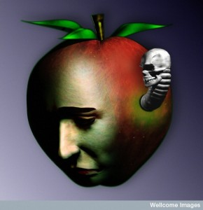 B0003385 Depression- bad apple theory - illustration Credit: Adrian Cousins. Wellcome Images images@wellcome.ac.uk http://wellcomeimages.org Computer-generated illustration showing the bad apple view of depression. Published: - Copyrighted work available under Creative Commons by-nc-nd 4.0, see http://wellcomeimages.org/indexplus/page/Prices.html