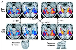 PD fMRI seeing houses