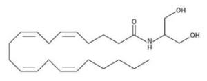 PD Endocannabinoid_Structure_-_2-Arachidonoylglycerol_(2AG)_Type
