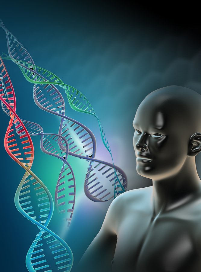 human genetics Human genetics research involves locating and characterizing genes underlying chronic diseases such as coronary heart disease and diabetes geneticists are responsible for characterizing the extent and.